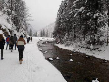 Ferie zimowe uczniów zeSzkolnego Koła PTTK